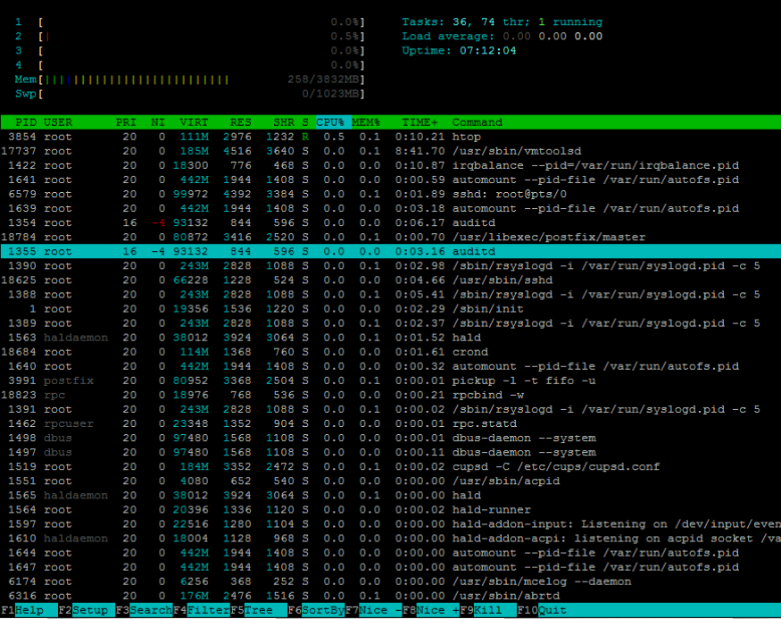 Htop Linux Processes Monitoring